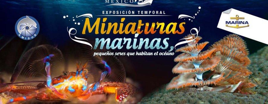 Miniaturas Marinas