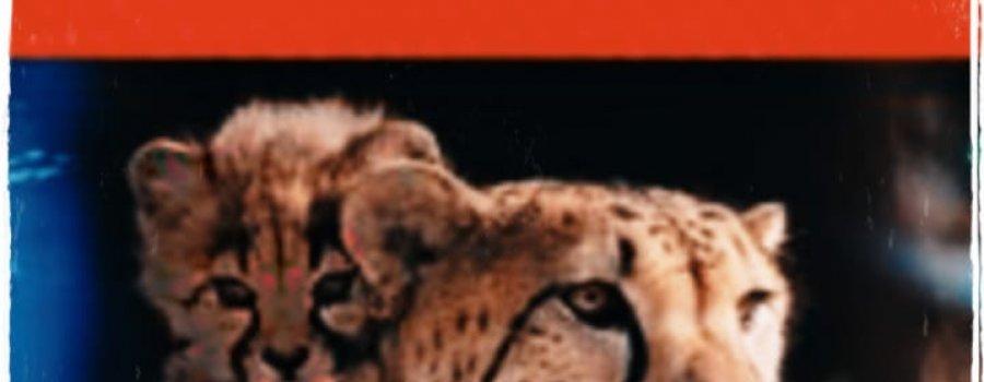 El libro rojo: Especies amenazadas