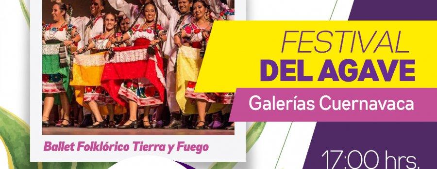 Ballet Folklórico Tierra y Fuego