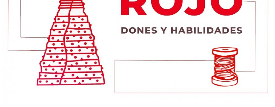 Vicente Rojo, Dones y Habilidades