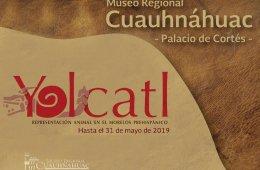 Yolcatl